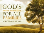 God's Prime Directive For All Families